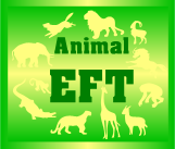 EFT For Animals - What Is EFT For Animals?