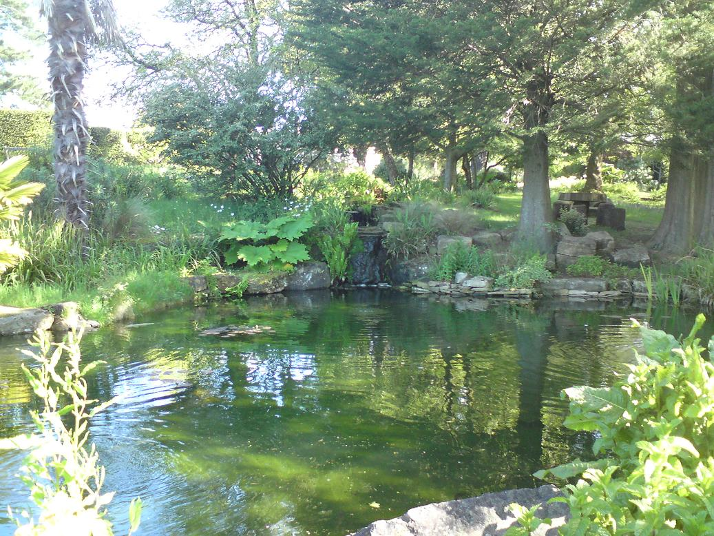 Fish pond and gardens at Sedgwick