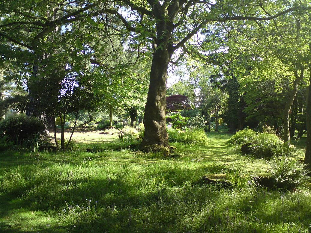 Woodlands and meadows