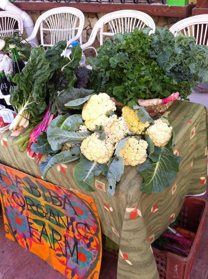 Habiba Organic Farm Shop