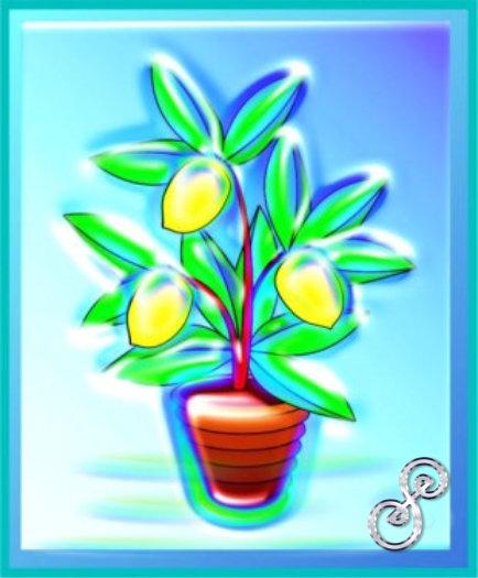 Das Geschenk: Der Zitronenbaum