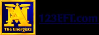 123EFT com